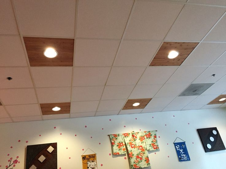 Great Alternative To Drop Ceiling Lighting Wcc Building In