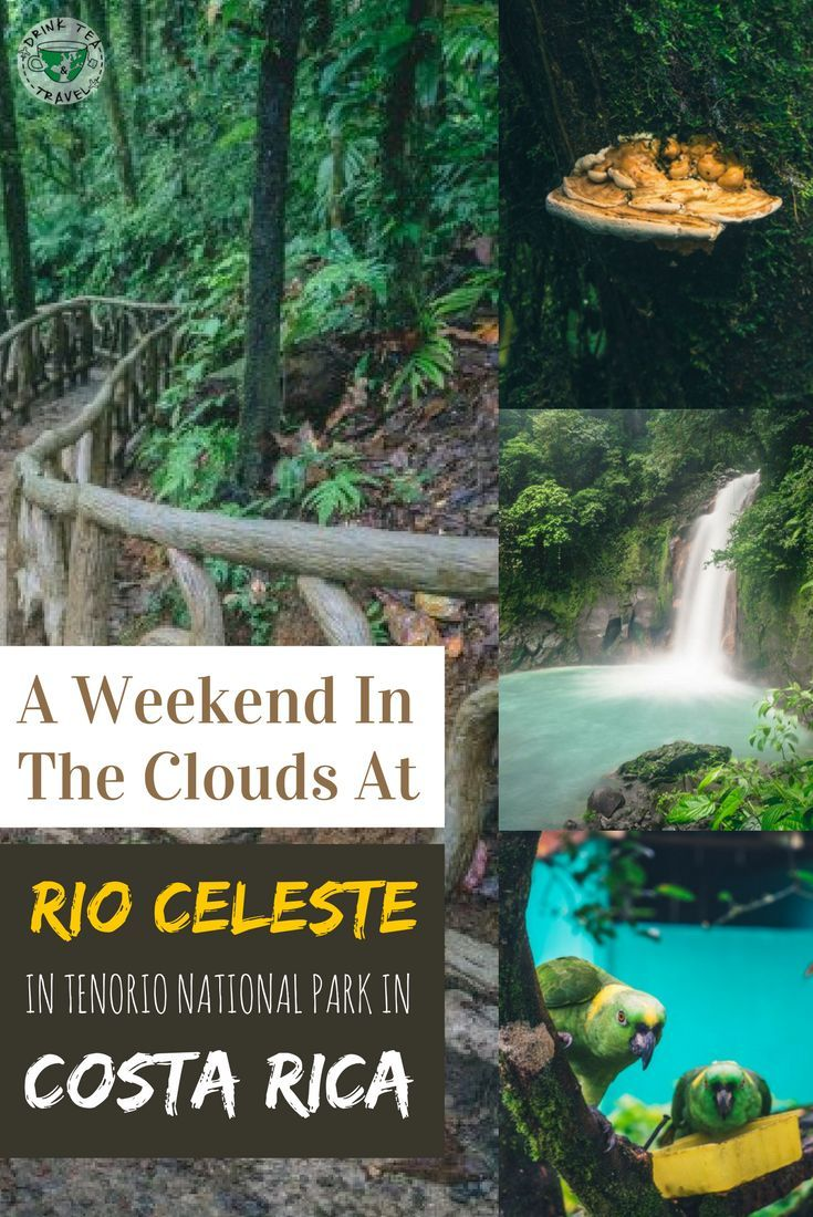 Planning a trip to Costa Rica? Here is how we spend a weekend hiking at the Tenorio National Park in Costa Rica.
