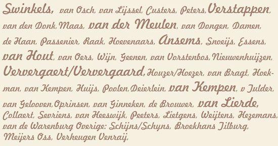 Familienamen die voorkomen in mijn genealogie. Zie www.publimon.nl