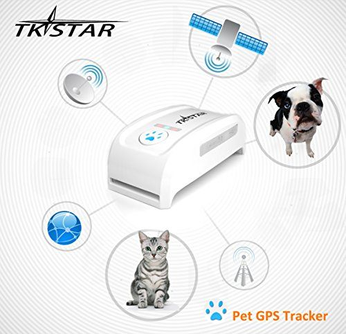 Neelam Mini Waterproof GPS Tracker Long Standby Time Dog Cat Pet Personal GPS Tracker Locator Real Time Tracker with Free Collar IOS Andriod App Free Website Service * Click on the image for additional details.(This is an Amazon affiliate link)