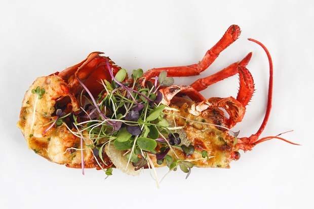 gourmet abu dhabi food
