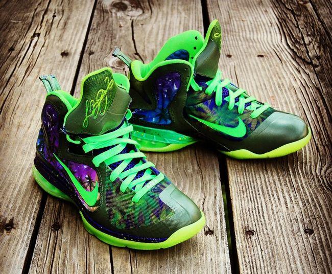 eb25dd6c0bcc Nike LeBron 9