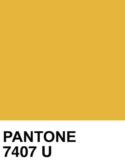 PANTONE SOLID UNCOATED 7407 U