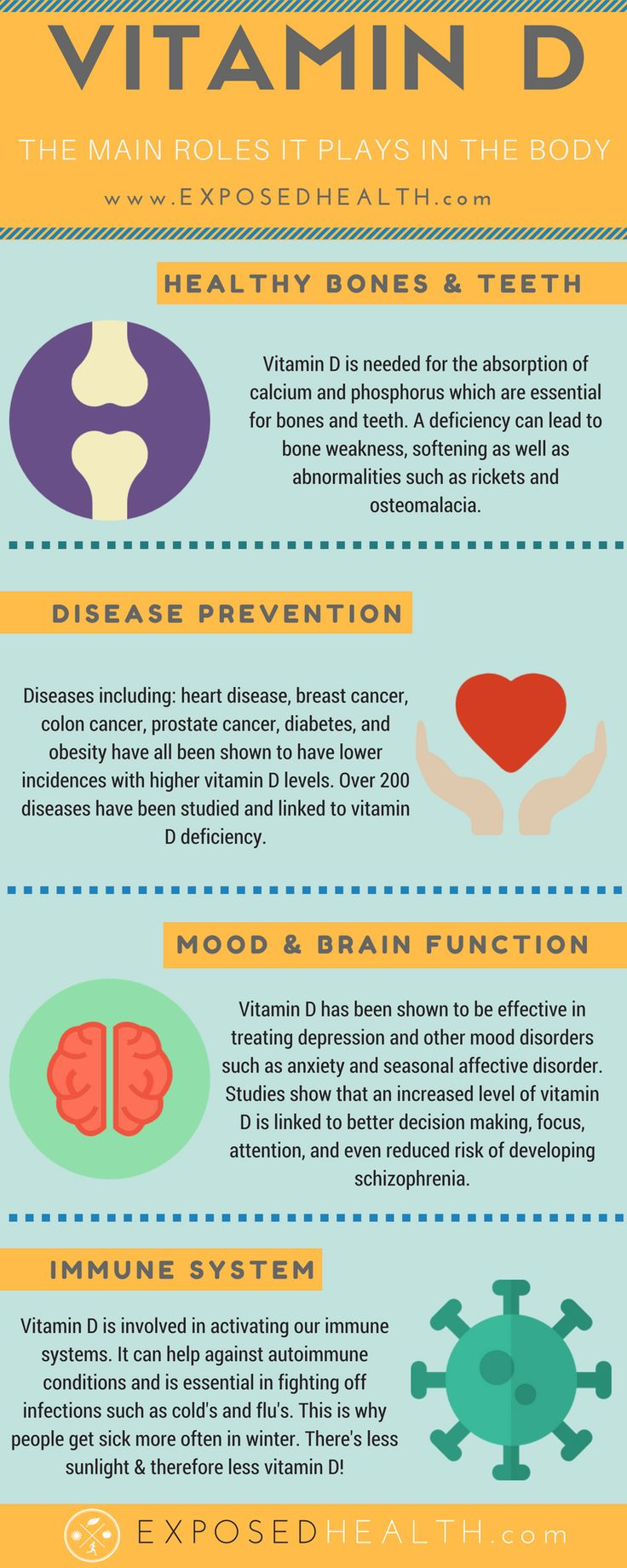 What Does Vitamin D Do? - infograpic