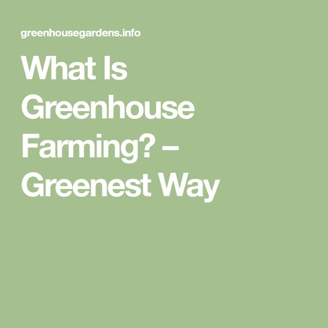 What Is Greenhouse Farming? – Greenest Way
