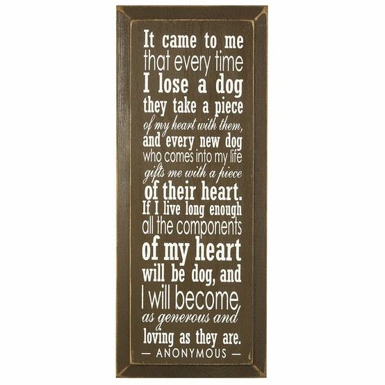 What a sweet dog quote - Click image to find more hot Pinterest pins