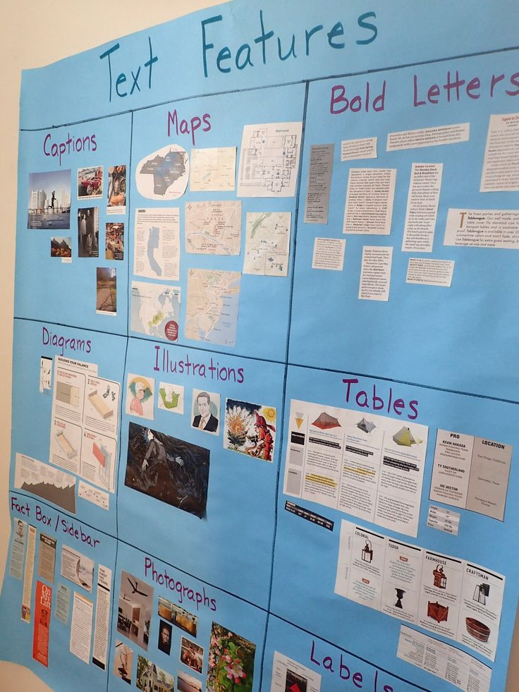Text Features - interactive reference poster that students can help create using old magazines or newspapers.