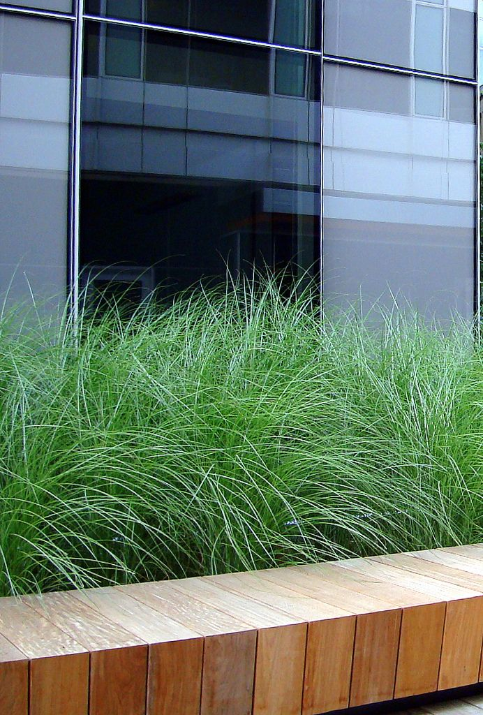 Mitered seat with grasses