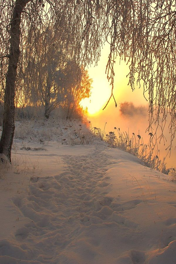 s-n-o-w-b-a-l-l:  ❄pure winter blog that checks out all new followers!❄