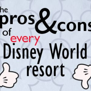 There are several WDW resorts that you could choose for your trip. Here's a breakdown of the pros and cons of every Disney World resort.