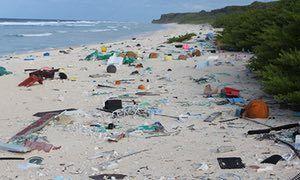 Plastic debris on East Beach, Henderson Island.