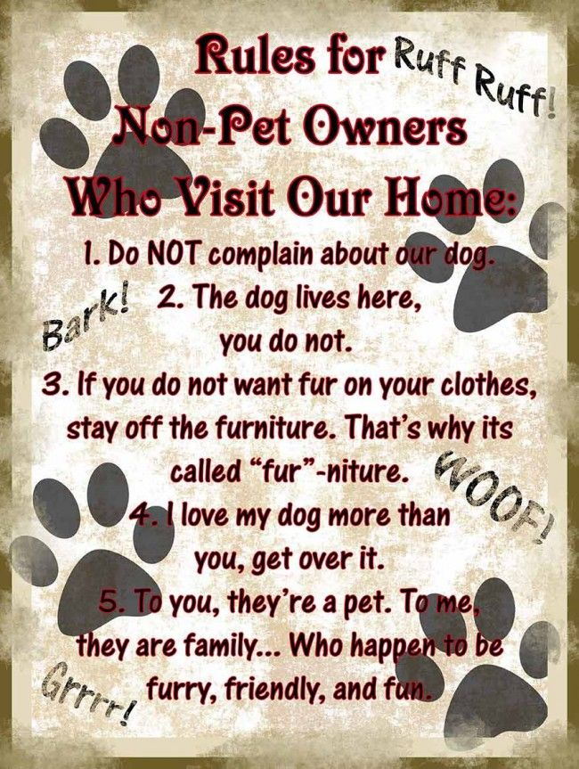 Rules For Non Pet Owners Metal Sign Pet Owners Pet Corner Pets
