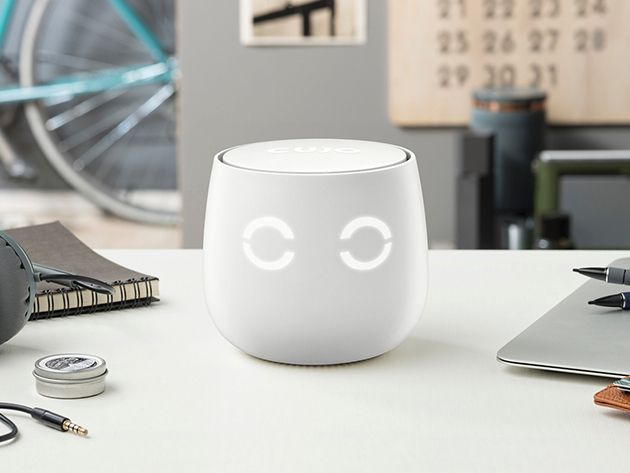 Meet Cujo: The cute looking, simple to use device that will secure your WiFi connected devices – BGR
