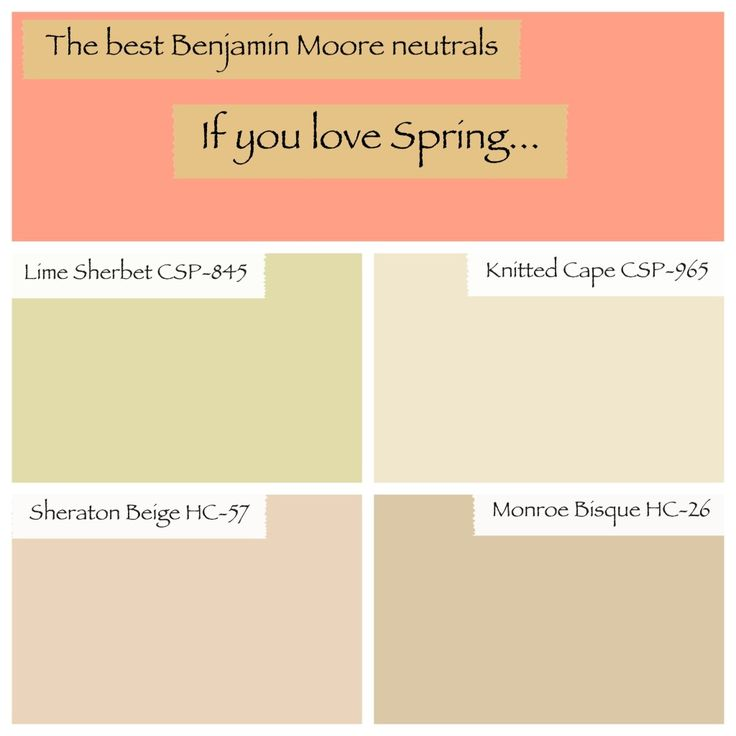 Benjamin Moore Best Neutrals My True Colors Are Shining