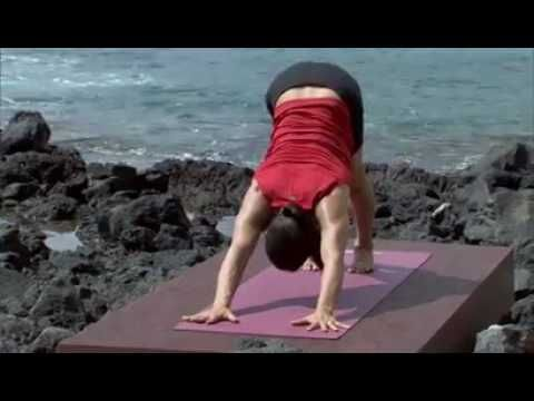 Rodney Yee's Ultimate Power Yoga Ep2 20 mins Vinyasa Moderate-2 Join yoga master Rodney Yee as he leads you through the ancient flowing sun salutations. The ...