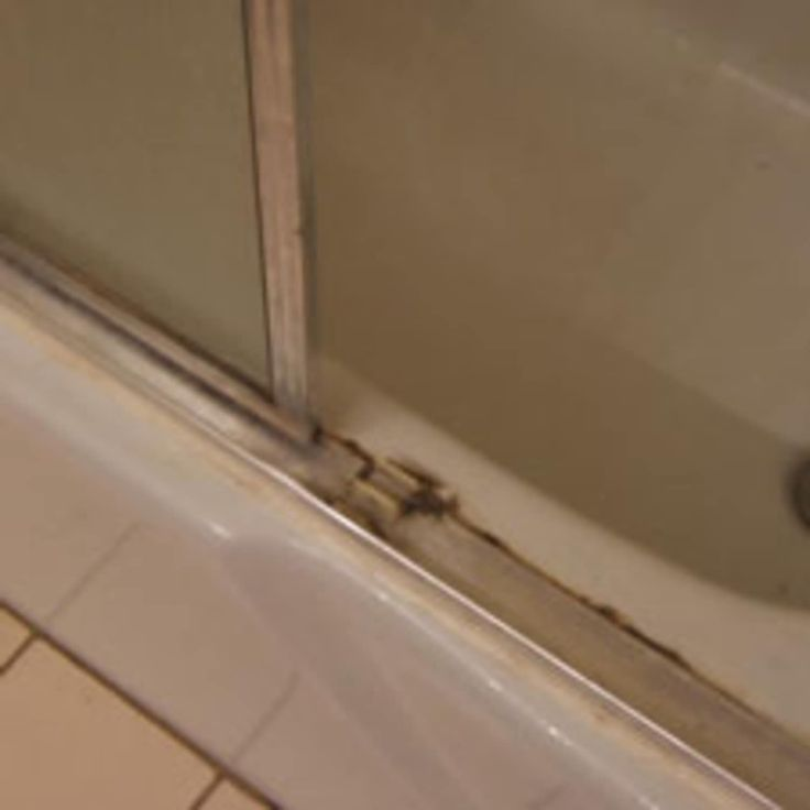 Tips For Cleaning Shower Door Track? in 2020 (With images
