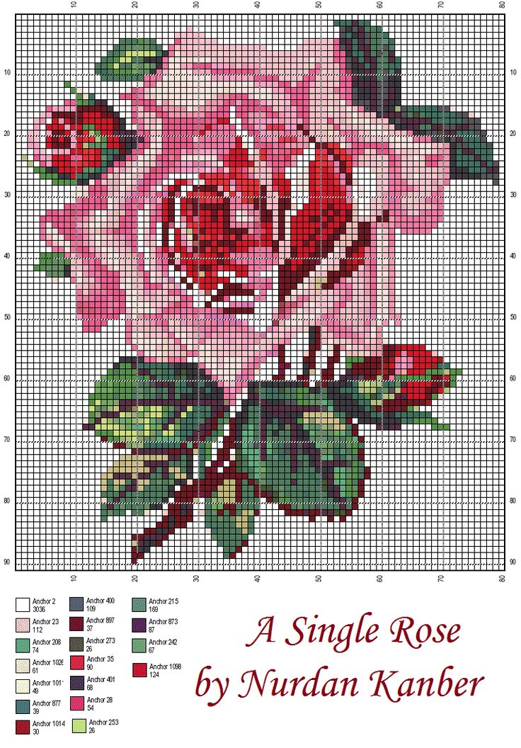 A Victorian Rose by Nurdan Kanber