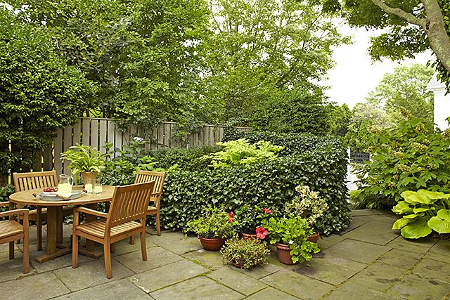 17 Best Images About Privacy Gardens On Pinterest