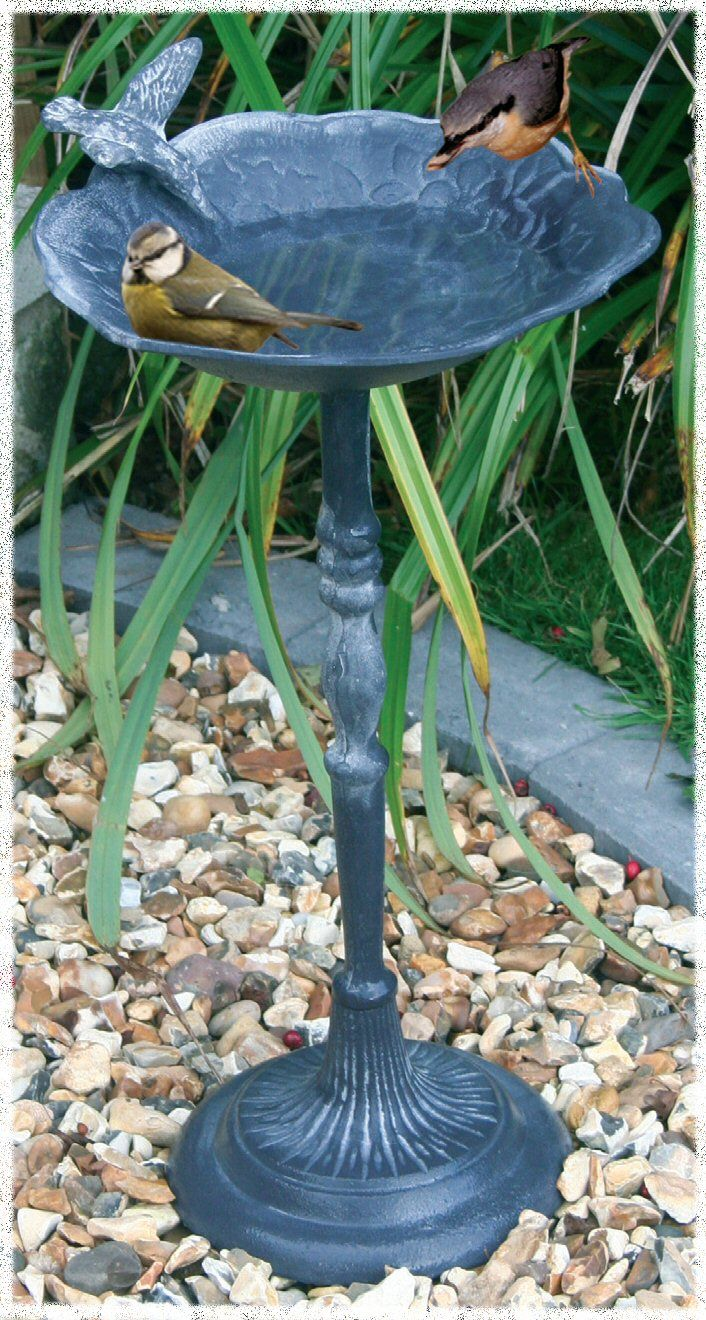Bird Baths Pedestal Bird Bath Bird Baths Pinterest