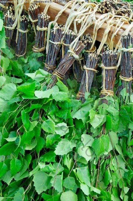 Birch leaves for sauna (vihta or vasta in finnish)