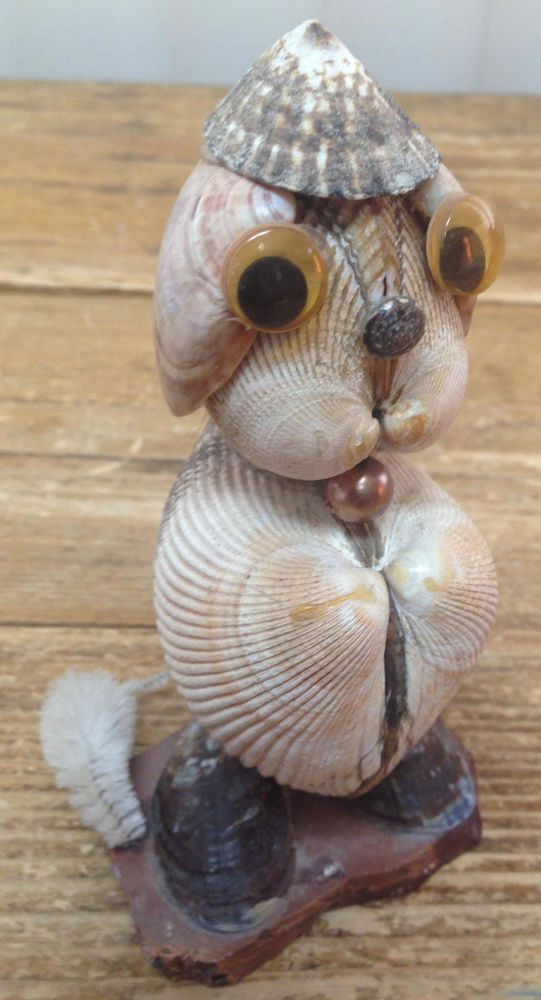 4772 best images about seashell craft idea on pinterest for Animals made out of seashells