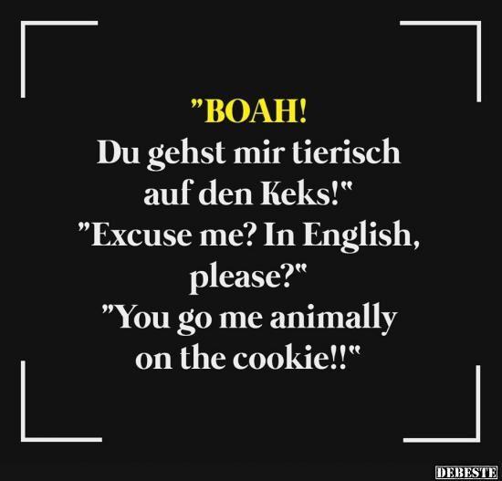 BOAH! Du gehts mir tierish.. | Lustige Bilder, Sprüche, Witze, echt lustig