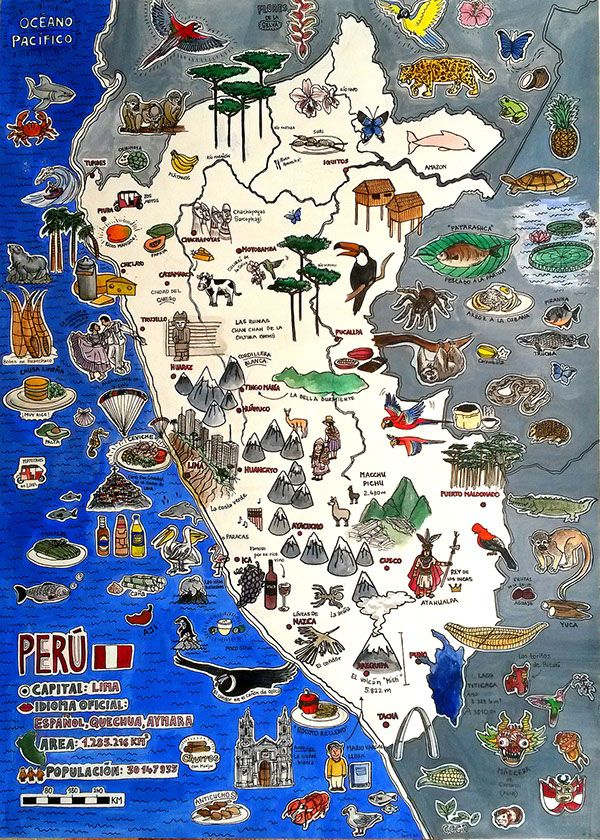 Illustrated Map Perú