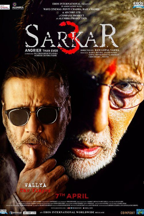 Watch Sarkar 3 (2017) Full Movie HD Free Download