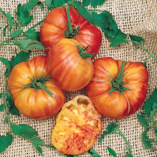 I love tomatoes.  Here is a list of heirloom tomato plant varieties, in alphabetical order, with brief descriptions