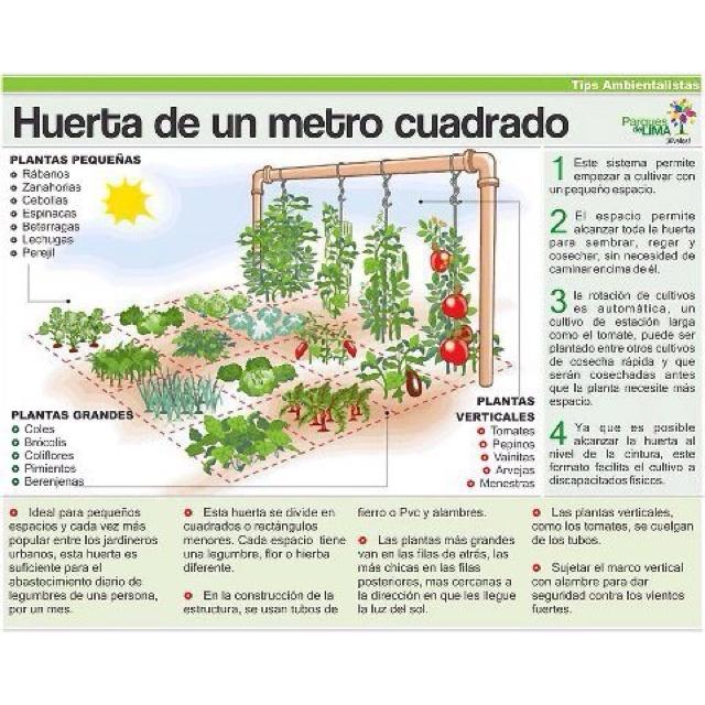 Espacio pequeño ,donde se puede cultivar hierbas y hortalizas que se usan para cocinar