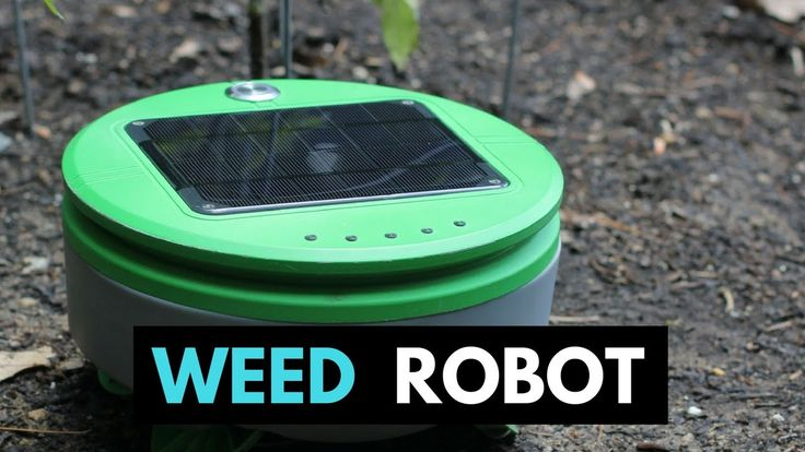 Tertill  - A weed whacking robot to patrol your garden