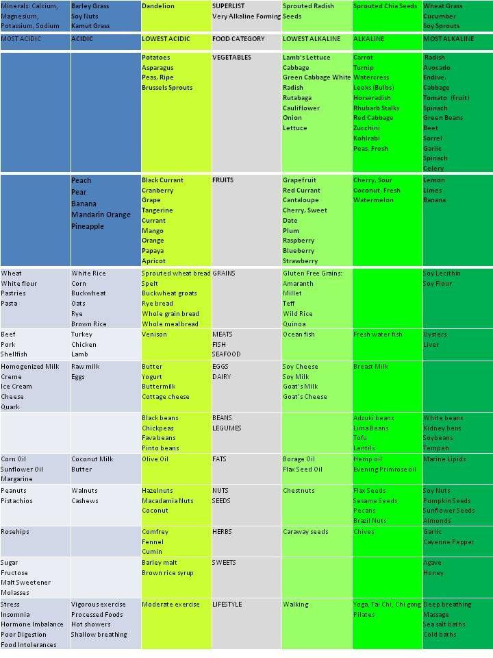 Best Alkaline Foods Chart foods or activities comprising 80  of