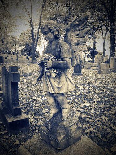 Angel  Woodlawn in Syracuse New York