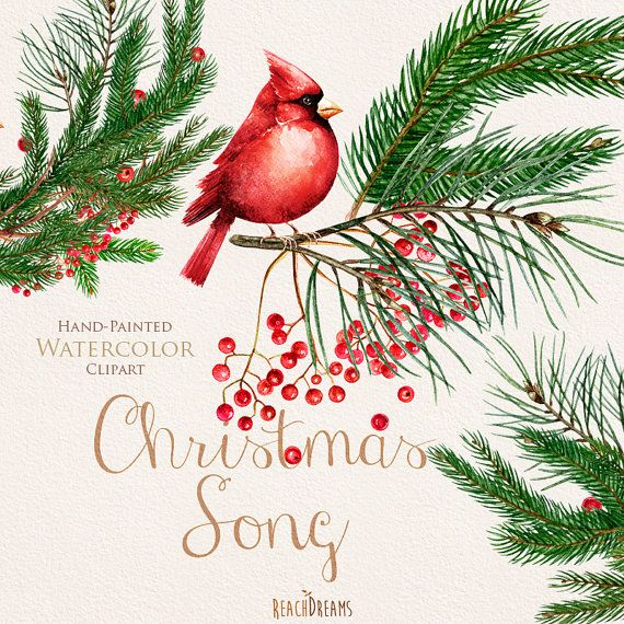 Christmas Birds Red Cardinals. Watercolor Bouquets and Wreaths, Merry And Bright. Christmas decoration, Hand painted clipart, New year