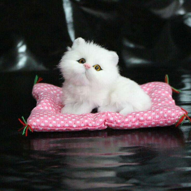 $7.57 (Buy here: https://alitems.com/g/1e8d114494ebda23ff8b16525dc3e8/?i=5&ulp=https%3A%2F%2Fwww.aliexpress.com%2Fitem%2FCute-Simulation-Plush-Cats-Soft-Plush-Talking-Toys-With-Cushion%2F32490848373.html ) 1PCS Cute Simulation Plush Toys Soft Stuff Talking Toy With Cushion Animal Plush Dolls  Gift Toys For Baby Kid Children for just $7.57