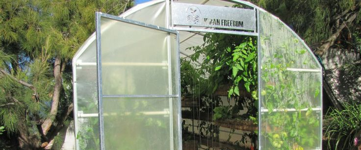 Vertical Gardening in an Urban Freedom Greenhouse.  Cape Town, South Africa. http://urbanfreedom.co.za