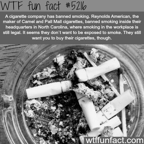 WHOA! ...A Cigarette company that bans smoking?  ~WTF! facts... Weird, but Interesting!