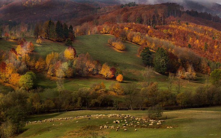 Bucovina a fairy land - Bucovina , Romania