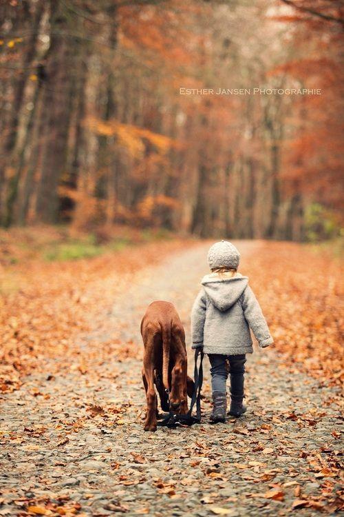Kind geht mit Hund im Herbst spazieren; Fotografie