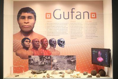Exposição no Museu Paranaense: Gufan pertencia a um povo indígena agricultor, ceramista e que possuía uma engenharia refinada de construções subterrâneas e habitava regiões com matas do pinheiro Araucária.