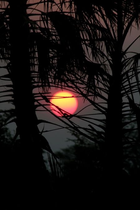 Sunset is a special time of day in Gorongosa National Park.   Photo by Jean-Paul Vermeulen.