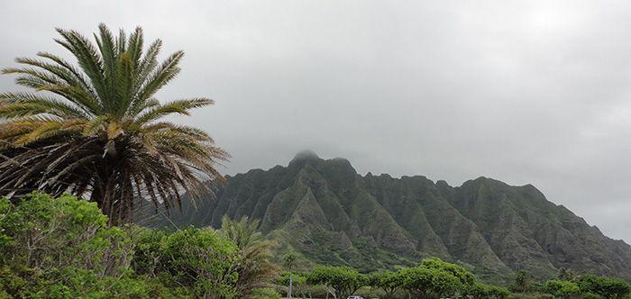 Hast Du nicht auch schon von einem Hawaii Urlaub geträumt? Und dann wegen der Kosten gleich wieder aufgehört? Hier gibt's Tipps, wie es günstiger geht!