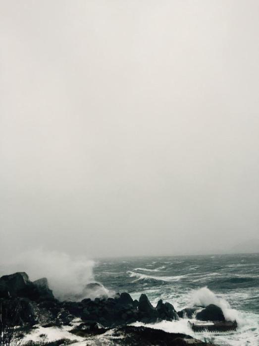 Orkanen Ole | BLV