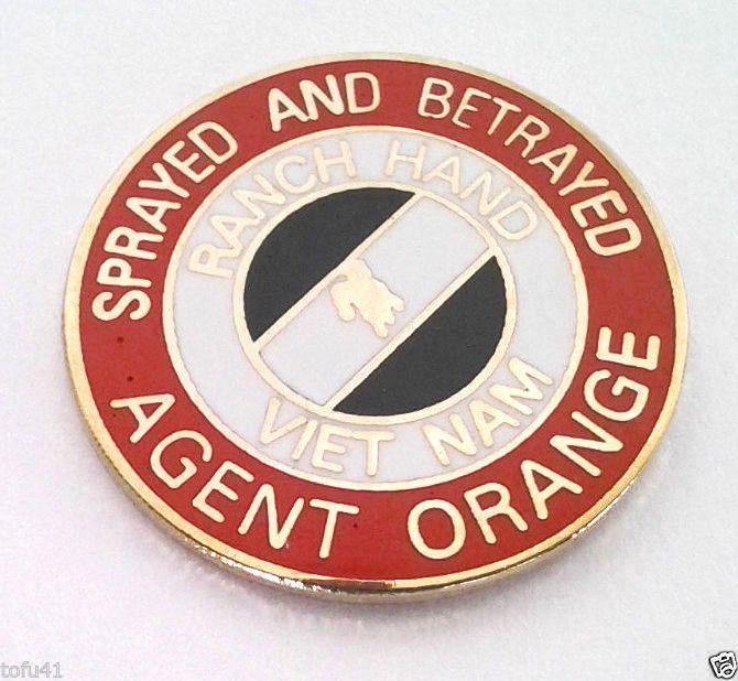 SPRAYED AND BETRAYED VIETNAM AGENT ORANGE Military Veteran Hat Pin 14679 HO
