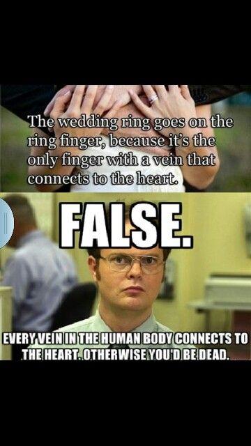 Dwight False