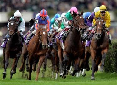 Saratoga Race Course, Saratoga Springs, NY