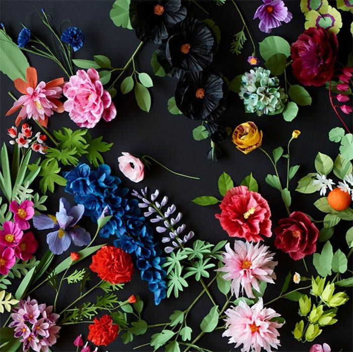 26 Paper Flower Artists to Follow on Instagram | Design*Sponge