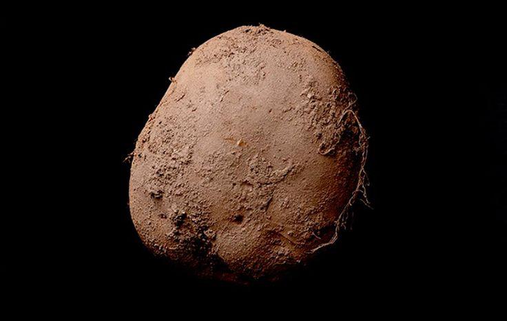 снимок картофелины за миллион долларов