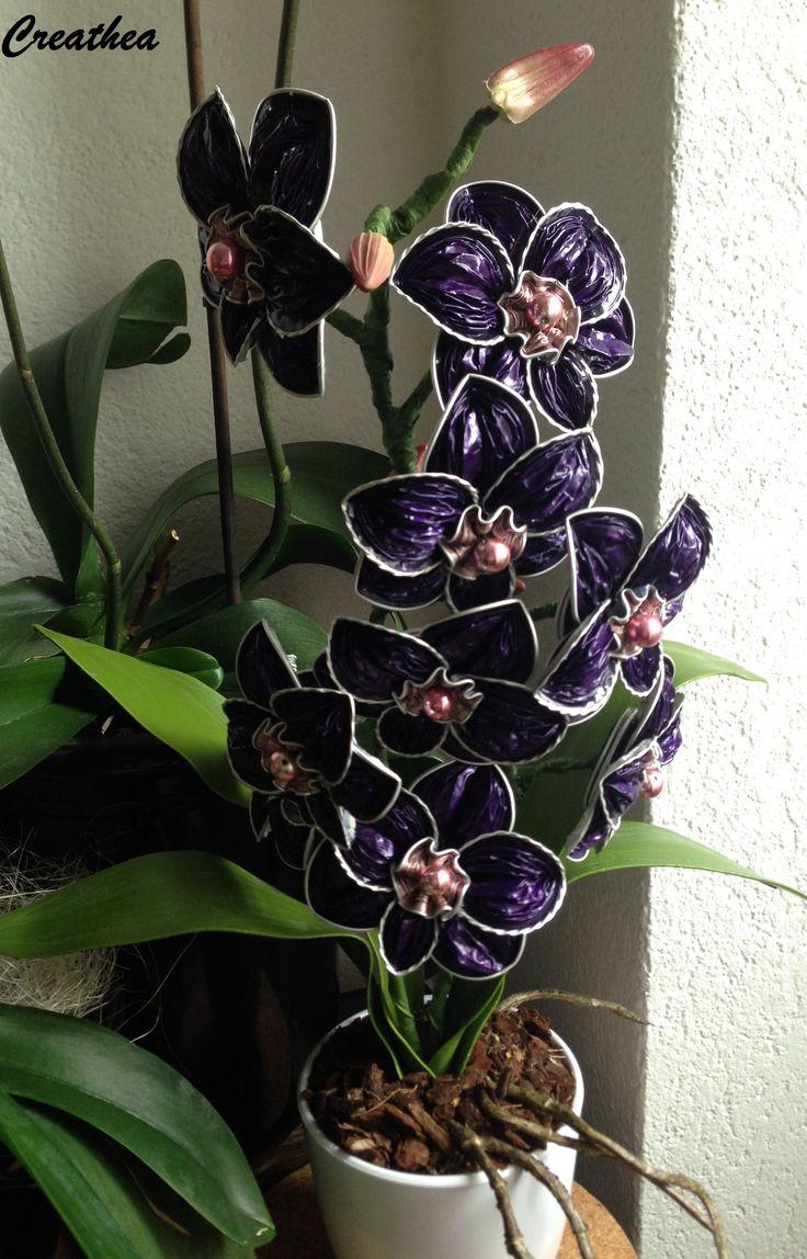 Nespresso:2° Orchidea con le capsule