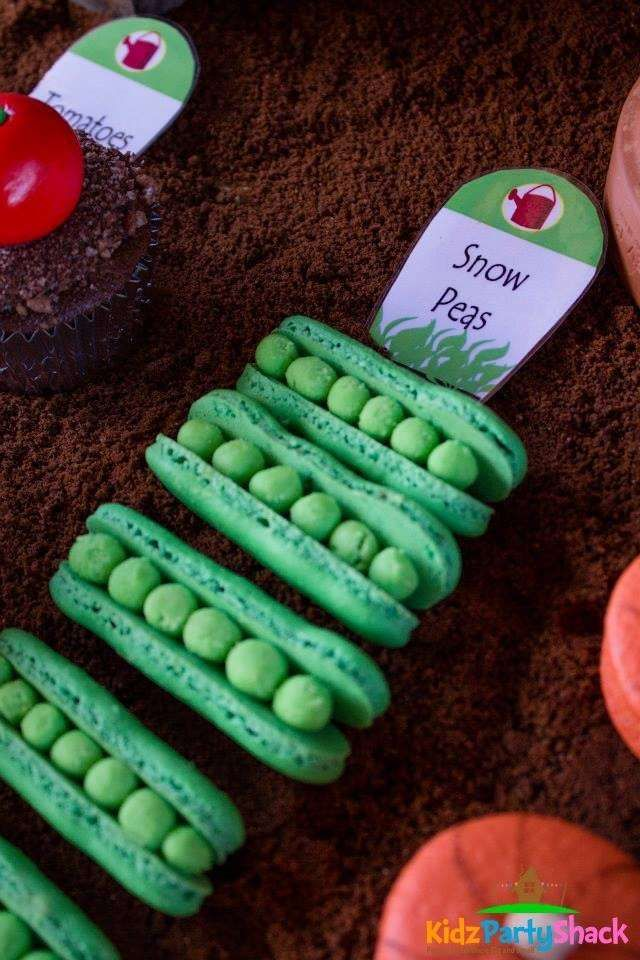 Check out these pea macarons at a farmers market birthday party! See more party ideas at CatchMyParty.com!